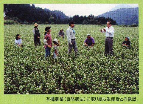 tsurunen_pamphlet_crop2.jpg