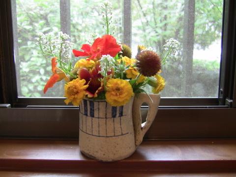 以前はあいちゃんが、トイレにお花を飾ってくれていましたが、今はのんちゃんが、かわいらしいお花をお庭から摘んできてくれます。