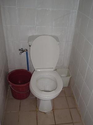 手動式?水洗トイレ
