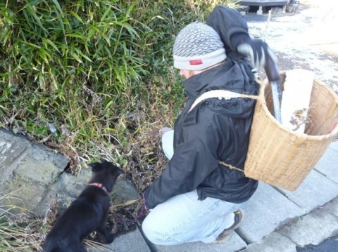 愛犬と一緒にゴミ拾いにまわるリックさん。