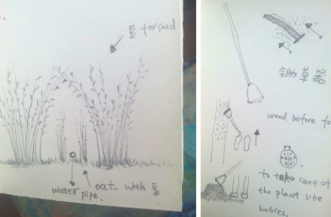 草取りについてのノート