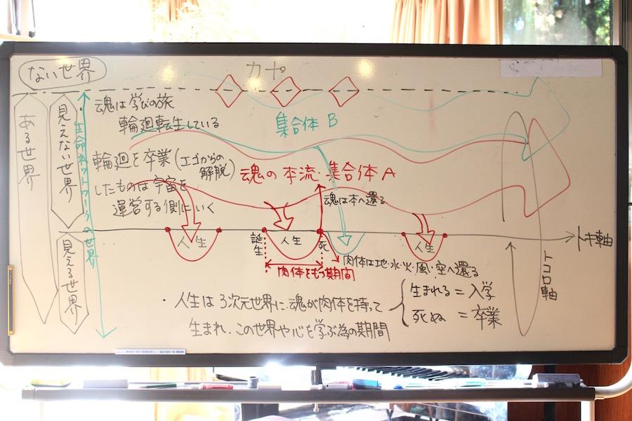 この日の大人ミーティングでみかちゃんが描いた生命の仕組みの図