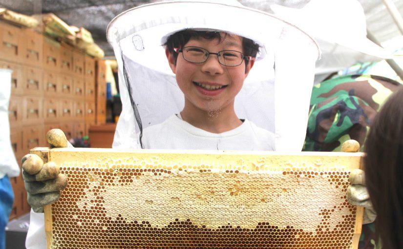 【木の花のたより 】ハチミツはすごい〜養蜂場へ行ってみよう!
